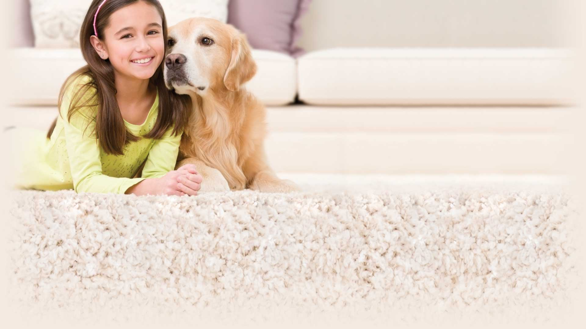 Aloha Chem-Dry Carpet Cleaning Services