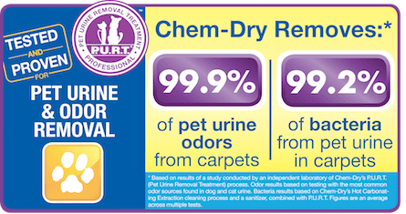 Pet Urine and Odor Removal Treatment by Aloha Chem-Dry in Kapolei, HI
